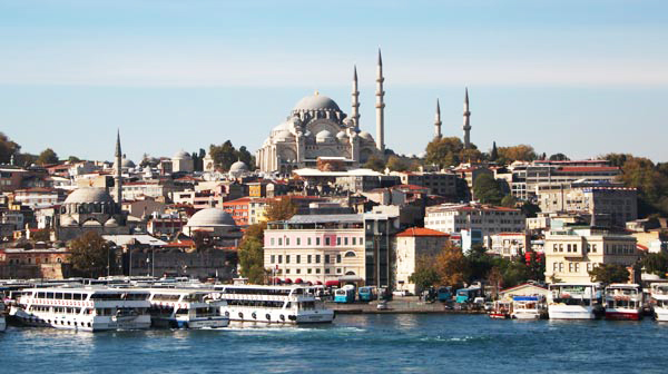 city Istanbul, Turkey, specialist